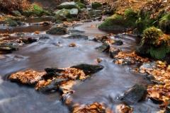Autumn, Foulstone Dike