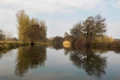 Early Spring on the Exeter Ship Canal