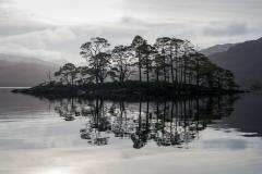Eilean Dubh na Sroine, Loch Maree